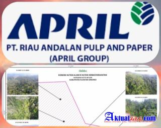 Group April Diduga Rencanakan Tebang Hutan Alam Riau