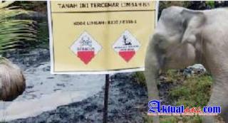 SKK Migas Diduga Penyebab 7 Jutaan Metrik Ton Limbah B3 PT Chevron Menjadi Ancaman