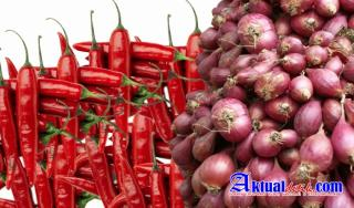 Survei Pemantauan Harga Cabe Rawit dan Bawang Merah Minggu Kedua Maret 2021