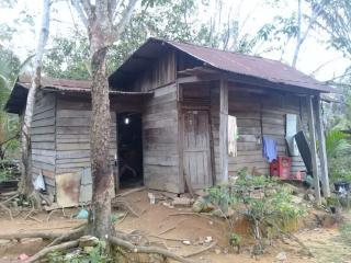 Berharap Kepedulian Pemerintah, Janda Tua Miskin Penghuni Rumah Reot di Koto Mesjid