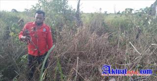 Ketua MPA Bagan Limau Kecam Oknum Perusak Bibit Tanaman Kehidupan TNTN